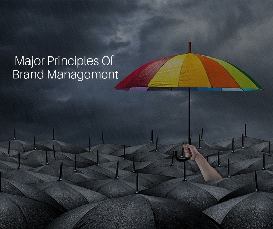 Major Principles Of Brand Management